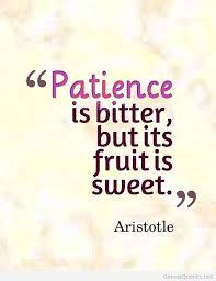 Aristotle on Patience